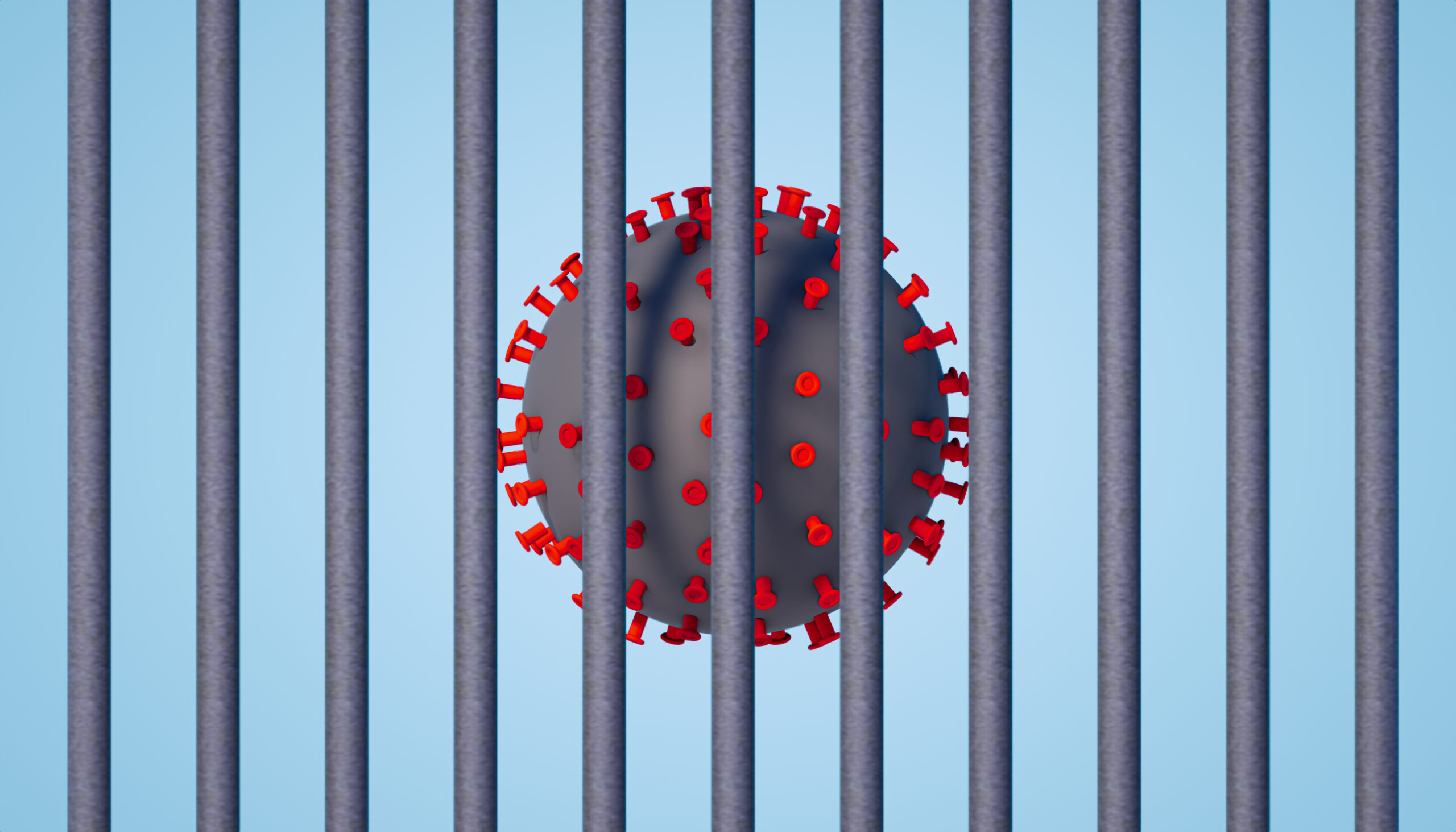 The virus in prisons: coordination and contingency plans